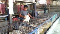 Salah seorang pedagang ayam potong di Pasar Regional Mamuju