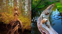Seniman Ini Buat Karya Seni Dari Akar Pohon, 6 Hasilnya Bikin Takjub. (Sumber: boredpanda)