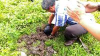 Jenazah janin bayi diduga hasil aborsi ilegal ditemukan di lahan kosong kawasan Bentena, Kabupaten Kepulauan Selayar, Sulsel. (Liputan6.com/Eka Hakim)