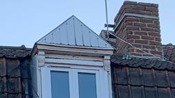 Seekor Black Panther berjalan di sepanjang atap rumah di Armentières, Prancis (19/9/2019). Usai ditangkap, hewan ini diserahkan kepada lembaga perlindungan hewan Humane Society setempat. (Photo by HO/Sapeurs-pompiers du Nord/AFP)