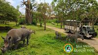 Wisata alam ala Afrika di Bali Safari & Marine Park (Foto: balisafarimarinepark.com)