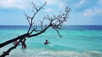 Ambon dikenal juga memiliki potensi wisata bahari dengan beragam ikan hias dan terumbu karang yang langka di dunia. Foto: SabaiX/Twitter