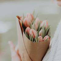 ilustrasi bunga/Photo by Priscilla Du Preez on Unsplash