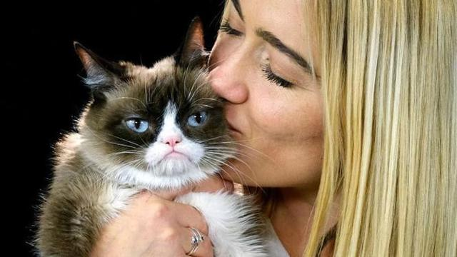Si Kucing Pemarah alias The Grumpy Cat (AP via The Washington Post)