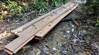 Tumpukan papan diduga hasil olahan ilegal logging di Suaka Margasatwa Rimbang Baling Kabupaten Kampar. (Liputan6.com/M Syukur)