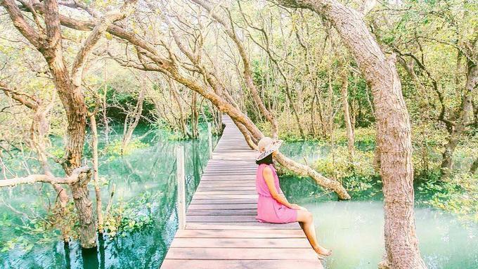 Nikmati Teduh Hutan Mangrove Bali Lifestyle Fimela Com