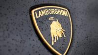 Logo Lamborghini adalah banteng. Apa maknanya?