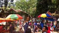 Banyak monyet di Plangon Cirebon (Liputan6.com / Panji Prayitno)
