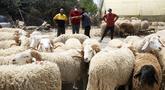 Sejumlah orang terlihat di sebuah kios penjualan domba kurban menjelang Hari Raya Idul Adha di Aljir, Aljazair, Minggu (12/7/2020). (Xinhua)