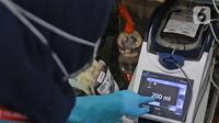 Petugas memeriksa kantong darah di kantor PMI DKI Jakarta, Jumat (20/3/2020). Dampak meluasnya Virus Corona COVID-19, stok darah di PMI Jakarta menurun 60 - 70 persen hingga membuat pihak rumah sakit membuka donor darah atau mengirim pendonor ke PMI. (Liputan6.com/Herman Zakharia)
