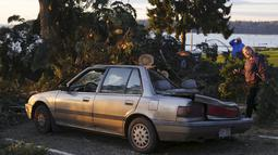 Sebuah mobil rusak tertimpa pohon yang roboh di daerah American Legion Memorial Park, Washington, Kamis (19/11/2015). Bencana ini menewaskan sedikitnya tiga orang. (REUTERS / David Ryder)