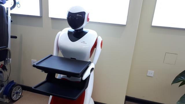 Penjinak Bom hingga Pelayan Restoran di Jakarta, Ini Robot Canggih Made in China