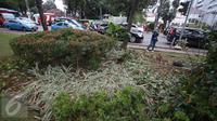 Kondisi tanaman yang rusak akibat unjuk rasa tuntut Ahok di depan gedung Balai Kota Jakarta, Jumat (14/10). Taman tersebut rusak akibat banyaknya pengunjuk rasa yang menginjak-injak serta duduk di atas tanaman. (Liputan6.com/Immanuel Antonius)