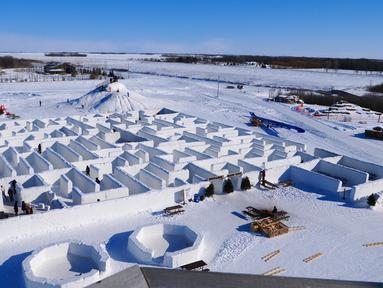 Orang-orang bermain di labirin salju yang dibuat Clint dan Angie Masse di St. Adolphe, Kanada, 3 Maret 2019. Labirin salju di lahan seluas 2.789 meter persegi di ladang jagung mereka memecahkan rekor sebagai yang terbesar di dunia. (Thibault JOURDAN/AFP)