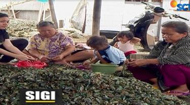 Para nelayan menjajakan ikan hasil tangkapannya, usai menghabiskan malam dengan melaut di perairan teluk Jakarta.