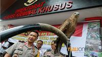 Direktorat Reserse Kriminal Khusus Kepolisian Daerah Riau ekspos 44 berbagai jenis satwa dilindungi selama dua pekan terakhir, Rabu, 30 Mei 2018. (Riauonline/Istimewa)