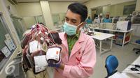 Petugas memperlihatkan kantong darah di kantor PMI DKI Jakarta, Jumat (24/6). Meskipun terdapat penurunan, namun stok darah di Ibu Kota relatif aman selama Ramadan dengan jumlah sekitar 800-1.500 kantong perhari. (Liputan6.com/Immanuel Antonius)