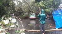 Sejumlah pohon tumbang akibat angin kencang. (Twitter Dishub Kota Bogor)