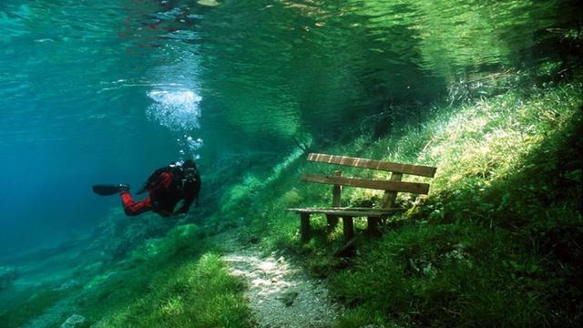 Keindahan Bawah Air Green Lake