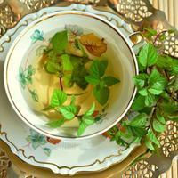 ilustrasi teh mint/Image by congerdesign from Pixabay