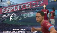 West Ham bekerja sama dengan perusahaan finansial dan investasi, Basset & Gold, menggelar final kejuaraan e-sports FIFA 19 di November ini.