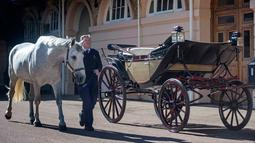 Senior Coachman, Philip Barnard-Brown membawa salah satu kuda yang akan menarik kereta kencana Ascot Landau di Istana Buckingham, London, Selasa (2/5). Kereta kencana itu akan digunakan Pangeran Harry dan Meghan Markle pada pernikahan mereka. (AP Photo)