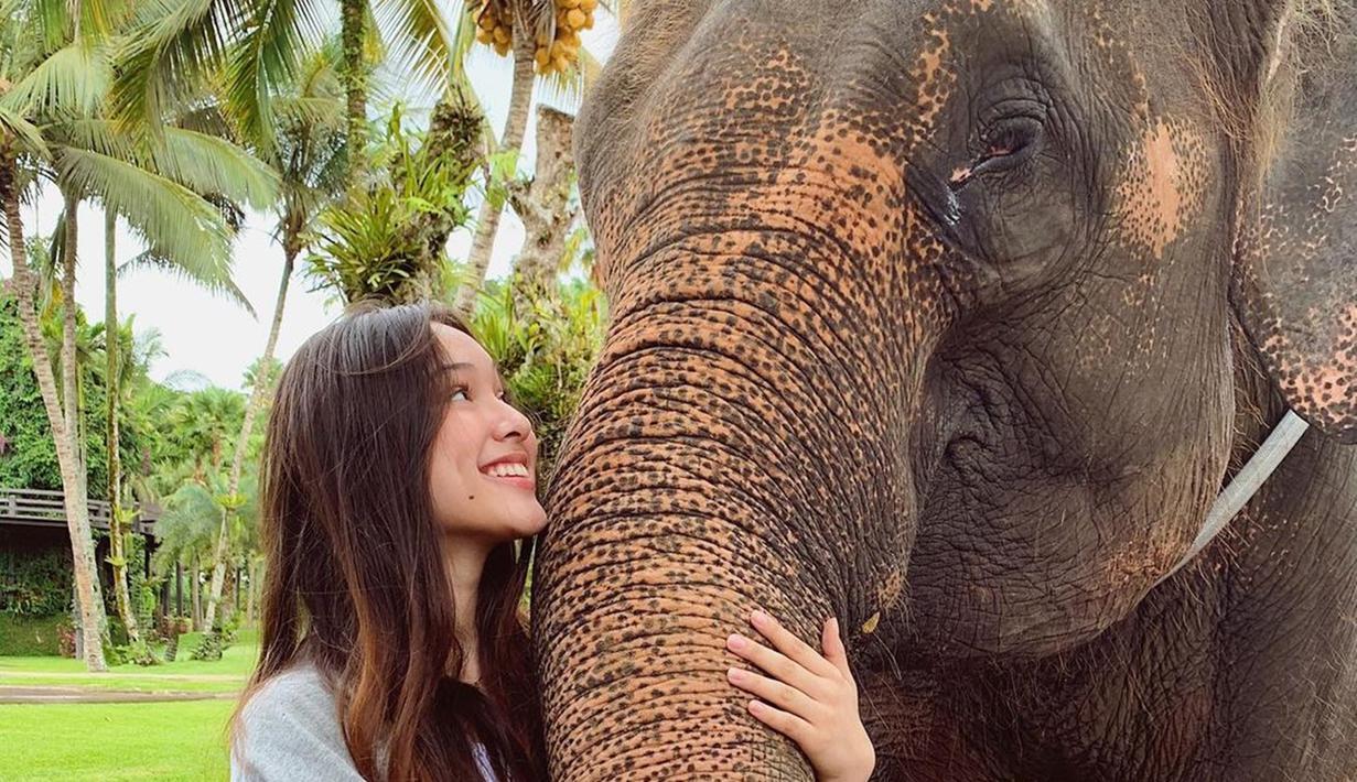 Pemeran Lulu di film Imperfect memang seorang pencinta binatang. Ia sangat suka dengan dengan binatang seperti gajah. Yasmin Napper bahkan tak ragu memeluk belalai gajah disertai dengan senyum lebar tanda ia begitu senang dekat dengan gajah. (Liputan6.com/IG/@yasminnapper)