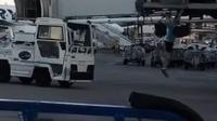 Seorang pria yang terlambat boarding melakukan hal unik: mengejar pesawat tersebut seperti mengejar angkot. Bagaimana ceritanya?