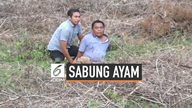Polisi Gorontalo terlibat aksi kejar-kejaran dengan para pejudi sabung ayam. Para pelaku berlari kocar-kacir hingga tertangkap di atas bukit.