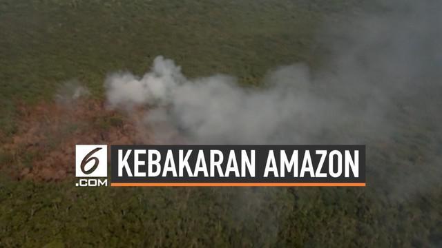 Hingga kini kebakaran terus terjadi di hutan hujan Amazon. Kebakaran malah merambah wilayah yang sebelumnya tidak memiliki titik api.