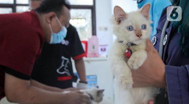 FOTO: Ratusan Hewan Peliharaan di Kota Tangerang Disuntik Vaksin Antirabies
