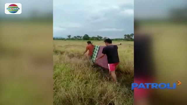 Empat warga yang tewas tersambar petir usai memanen padi di Bombana, Sulawesi Tenggara, dimakamkan hari ini.