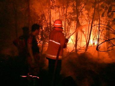 Petugas pemadam kebakaran memadamkan api saat kebakaran hutan dan lahan (karhutla) di Pekanbaru, Riau, Jumat (13/9/2019). Karhutla menyebabkan kabut asap pekat menyelimuti Pekanbaru. (ADEK BERRY/AFP)