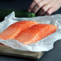 ilustrasi salmon/Photo by Caroline Attwood on Unsplash