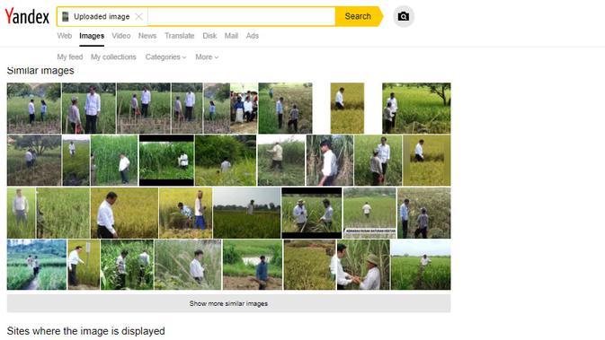 Penelusuran klaim foto Jokowi bertemu dengan orang-orangan sawah