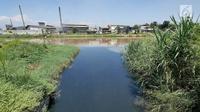 Foto Sungai Citarum di kawasan Cicukang, Bandung, Jawa Barat, Rabu (3/4). Program Citarum Harum akan dilaksanakan oleh Kementerian Koordinator Bidang Kemaritiman. (Liputan6.com/Herman Zakharia)