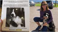 Carole dan anjingnya yang bernama Katie (Sumber: boredpanda)