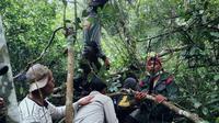 Petugas sempat meletuskan senjata api ke udara, tapi harimau yang diburu malah makin galak. (Liputan6.com/M Syukur)