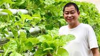 Ignasius Jonan membagikan kegiatannya memanen sayuran dari berkebun hidroponik di rumah. (dok. Instagram @ignasius.jonan/https://www.instagram.com/p/CIKvVYqpk9J/)