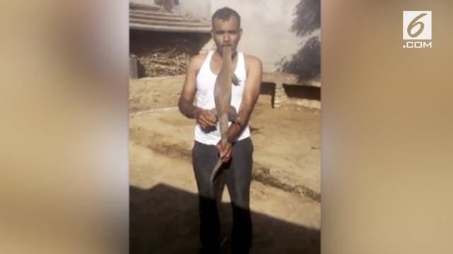 Gumaan Singh melakukan aksi nekat. Pria asal India ini memasukan kepala kadal sepanjang 2 kaki ke dalam mulutnya tanpa alat pengamanan.