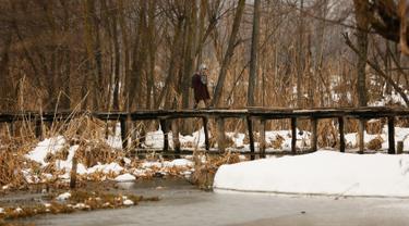 Seorang gadis berjalan di jembatan kayu menuju sekolah di Srinagar, Kashmir yang dikuasai India (7/1). Musim salju telah mengakibatkan gangguan lalu lintas udara dan lalu lintas jalan antara Srinagar dan Jammu. (AP Photo/Mukhtar Khan)