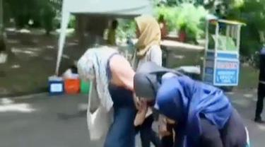 Serangan Tawon di Kebun Raya Bogor