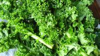 Kale, sayuran hijau kaya kalsium (Foto: .shamatapilates)