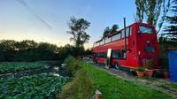 Sepasang kekasih di London memilih membeli bus dan merenovasinya jadi hunian yang nyaman dan terkesan mewah. (dok. Instagram @doubledeckerhome)