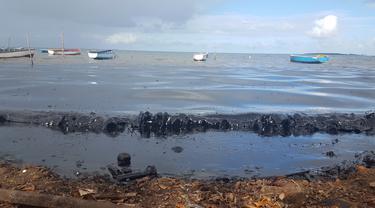 FOTO: Tumpahan Minyak Kapal Jepang Cemari Perairan Mauritius