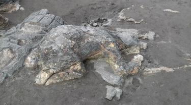Upaya Pemkot Padang Jaga Kepopuleran Batu Malin Kundang yang Mendunia