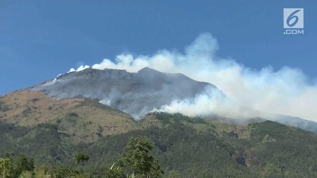 Penyebab terbakarnya hutan lindung gunung Sindoro di Temanggung jawa-tengah yang terjadi dalam beberapa waktu lalu, kini telah ditemukan jawabannya.