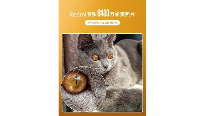Hasil jepretan lensa kamera 64MP milik smartphone Redmi (Foto: Gizmochina)