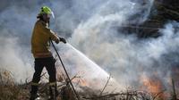 Petugas pemadam kebakaran berusaha memadamkan api yang meluas di Pulau Selatan, Selandia Baru (AP/Chad Sharman)