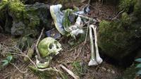 Hutan Aokigahara menjadi lokasi bunuh diri favorit di Jepang